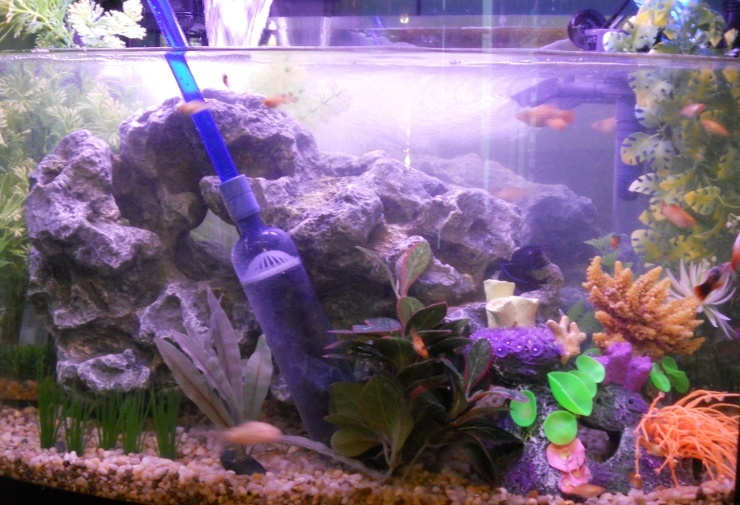 Pet Supplies Shop For Cheap Fish Tank Aquarium Vacuum Gravel Cleaner Hoover Siphon Pump Water Syphon Clean